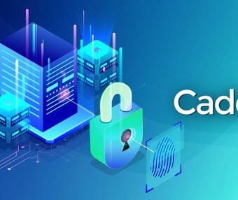 一个极简的HTTP Server: Caddy一键安装脚本,带网站配置教程